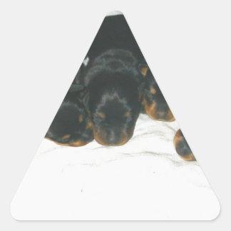 Rottweiler Puppies Triangle Sticker