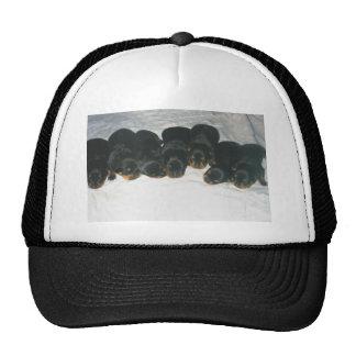 Rottweiler Puppies Trucker Hat