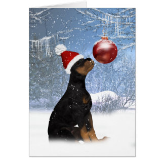 Rottweiler Puppy Christmas - Holiday Card