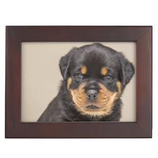 Rottweiler puppy portrait keepsake box