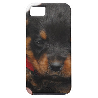 Rottweiler Puppy Red Case For The iPhone 5