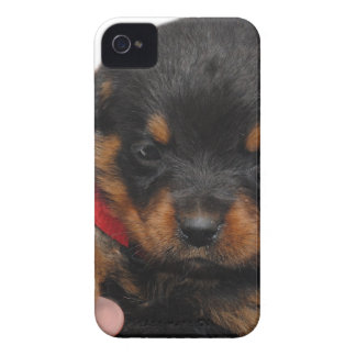 Rottweiler Puppy Red iPhone 4 Case