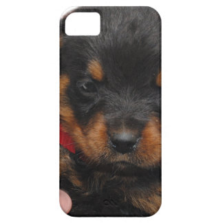 Rottweiler Puppy Red iPhone 5 Covers