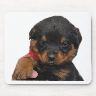 Rottweiler Puppy Red Mouse Pad