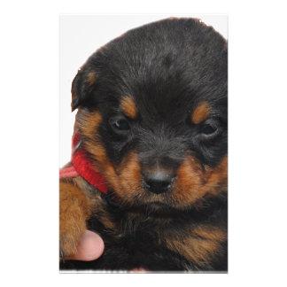 Rottweiler Puppy Red Stationery Design