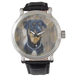 Rottweiler Watch