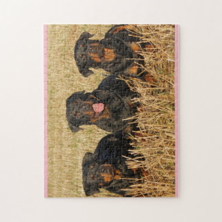 Rottweilers Jigsaw Puzzle