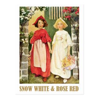 Rouge de neige blanc et de rose cartes postales