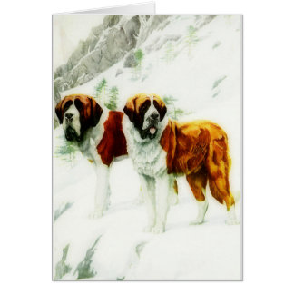 rough and smooth St Bernard - painting Card