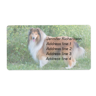 Rough collie dog personalize custom address labels