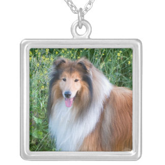 Rough Collie dog portrait necklace, present idea Silver Plated Necklace