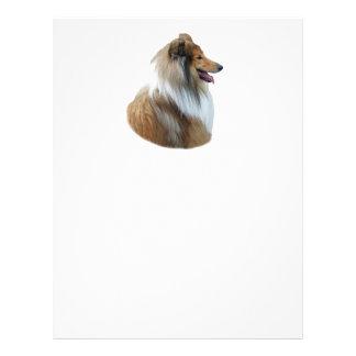 Rough Collie dog portrait photo Flyer