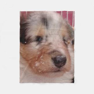 Rough Collie Puppy Face Fleece Blanket