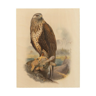 Rough-legged Buzzard Gould Birds of Great Britain Wood Print