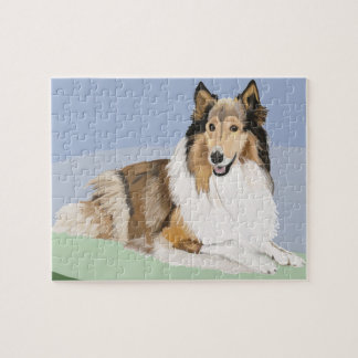 Rough, Long Haired Collie Puzzle