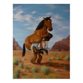 Rough Rider Postcard