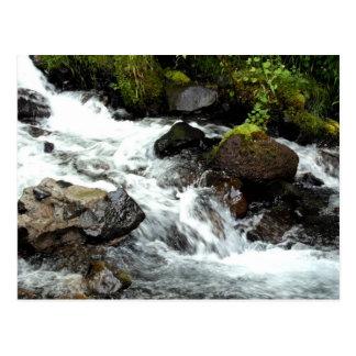 Rough River Postcard