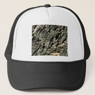 rough rock ridge trucker hat