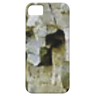 rough white rock ceiling case for the iPhone 5