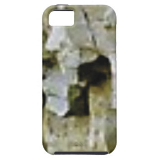 rough white rock ceiling iPhone 5 case