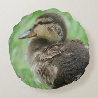 Round cushion duck chicken Duckling v. Jean l.