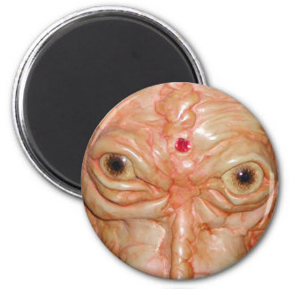"Round Magnet, ""Brown Demon Eyes"" Magnet"