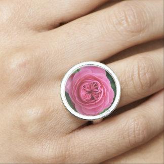 Round Rings Pink Macro