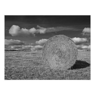 Round Straw Bales in Black & White Poster 3