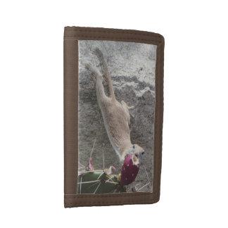 Round-tailed Ground Squirrel Stretching Tri-fold Wallet