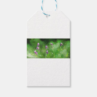 Row Of Irises Gift Tags