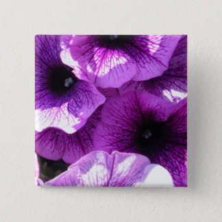 Row of Purple Wave Petunias 2 Inch Square Button