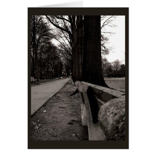 Row of Trees Card