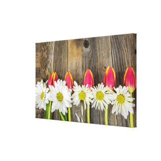 row of tulips and daisies on wood canvas print