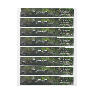 Row of Turtles Green Nature Photo Wrap Around Label