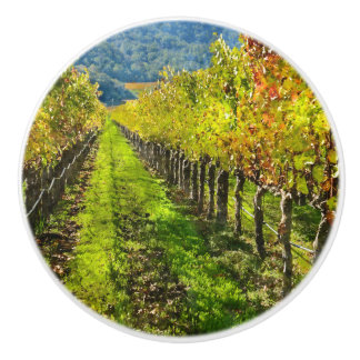 Rows of Grapevines in Napa Valley California Ceramic Knob