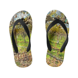 Rows of Grapevines in Napa Valley California Kid's Flip Flops