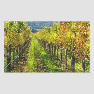Rows of Grapevines in Napa Valley California Sticker