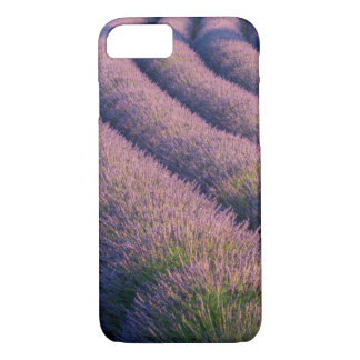 Rows of lavender in Provence iPhone 7 Case