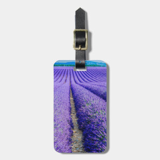 Rows of Lavender, Provence, France Luggage Tag