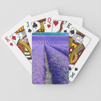 Rows of Lavender, Provence, France Playing Cards