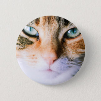 Roxie the cat 2 inch round button