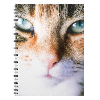 Roxie the cat note book