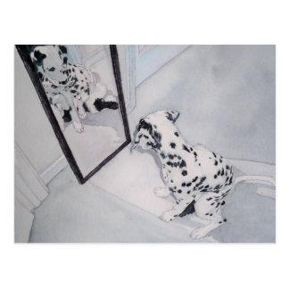 Roxie the Dalmatian Postcard