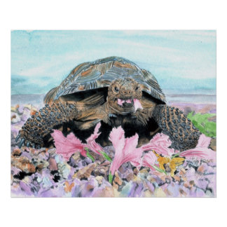 Roxy the Turtle Canvas Print