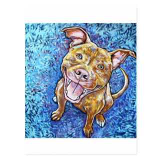 ROY the pitbull Postcard