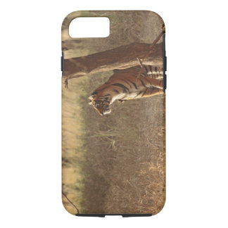 Royal Bengal Tiger on look out for prey, iPhone 7 Case