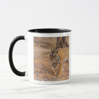 Royal Bengal Tiger on the move, Ranthambhor Mug