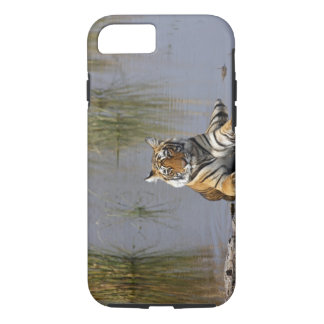 Royal Bengal Tiger sitting in the Rajbagh Lake, iPhone 7 Case