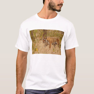 Royal Bengal Tiger walking around the bush, T-Shirt