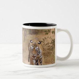 Royal Bengal Tigers on the track, Ranthambhor 3 Mug